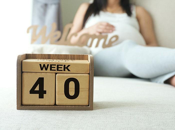 Беременная женщина и календарь с неделями беременности
