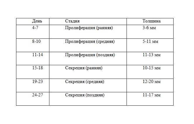 Таблица нормы эндометрия